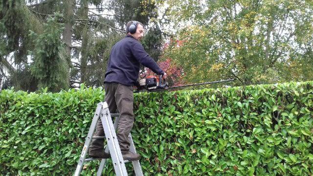 Contrat ou entretien des espaces verts mantes la jolie for Contrat entretien jardin